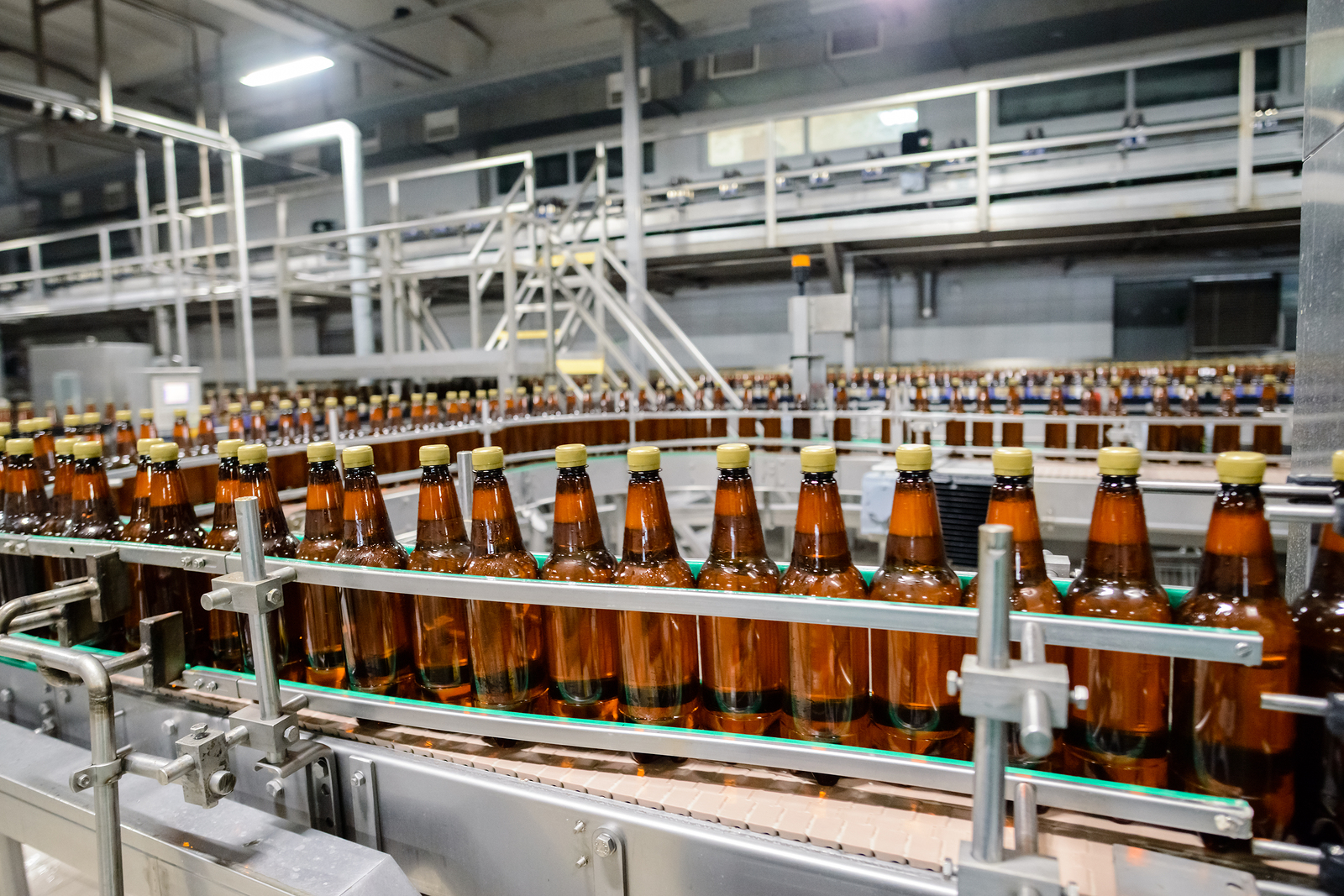 Australian Lion Beer is packaged on bottling conveyor